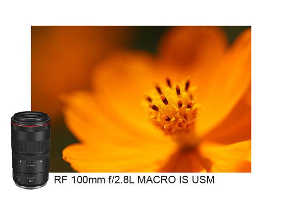 Lensa Canon RF 100mm f 28L MACRO IS USM
