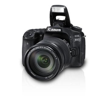 EOS80D_kitiii_b2.png
